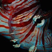 lionfish_blueabyss